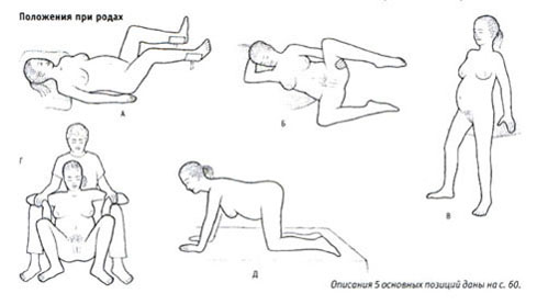 fitnes-trener-seks-onlayn